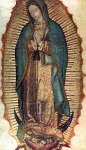 Our Lady of Guadalupe picture